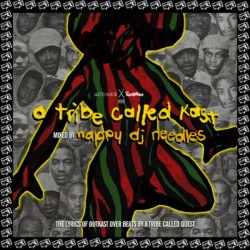 a-tribe-called-quest-outkast-nappy-dj-needles